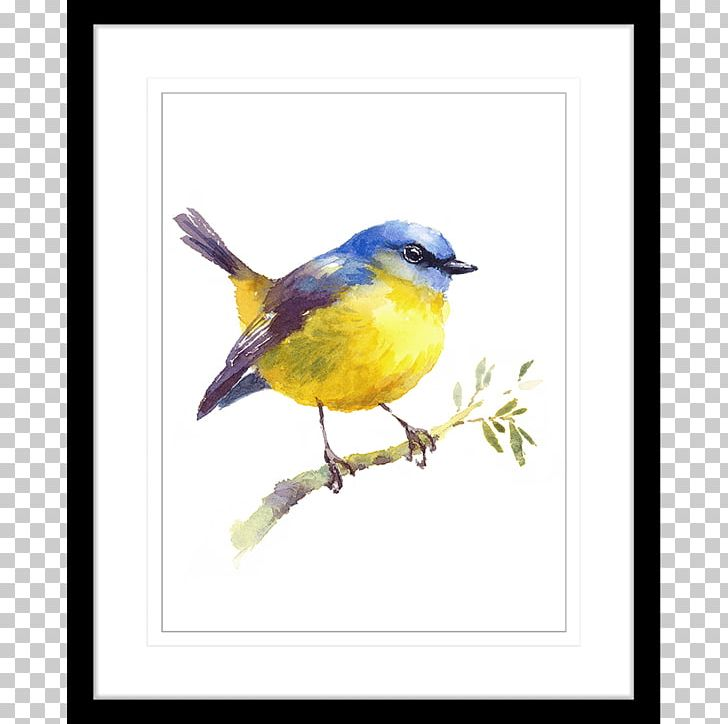 Bird Watercolor Painting Art Drawing PNG, Clipart, Animals, Art, Artist, Beak, Bird Free PNG Download
