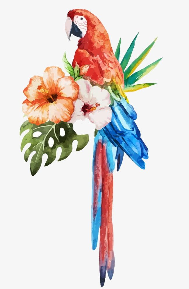 Parrot Watercolor Flowers PNG, Clipart, Flowers, Flowers Clipart, Parrot, Parrot Clipart, Watercolor Free PNG Download