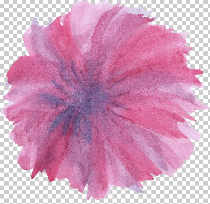 Watercolour Flowers Watercolor Painting Pink PNG, Clipart, Art, Carnation, Color, Crayon, Drawing Free PNG Download