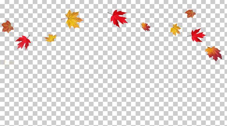 Autumn Leaf Color PNG, Clipart, Autumn, Autumn Leaf Color, Autumn Leaves, Border, Clip Art Free PNG Download