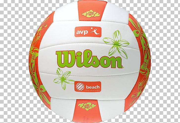 Association Of Volleyball Professionals Beach Volleyball