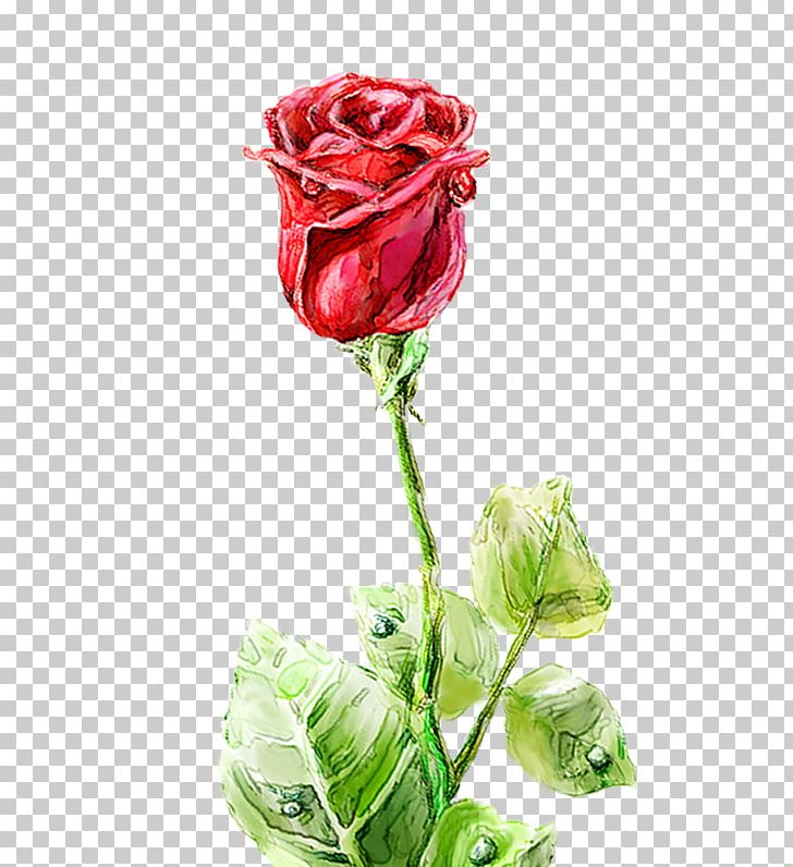 Garden Roses Centifolia Roses Floral Design Vase Cut Flowers PNG, Clipart, Artificial Flower, Computer Icons, Cosmetic, Cut Flowers, Decorative Pattern Free PNG Download