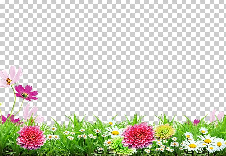 Poster PNG, Clipart, Advertisement Poster, Animation, Computer Wallpaper, Dahlia, Daisy Family Free PNG Download