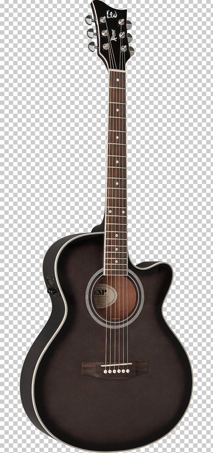 Twelve-string Guitar Taylor Guitars C  F  Martin & Company