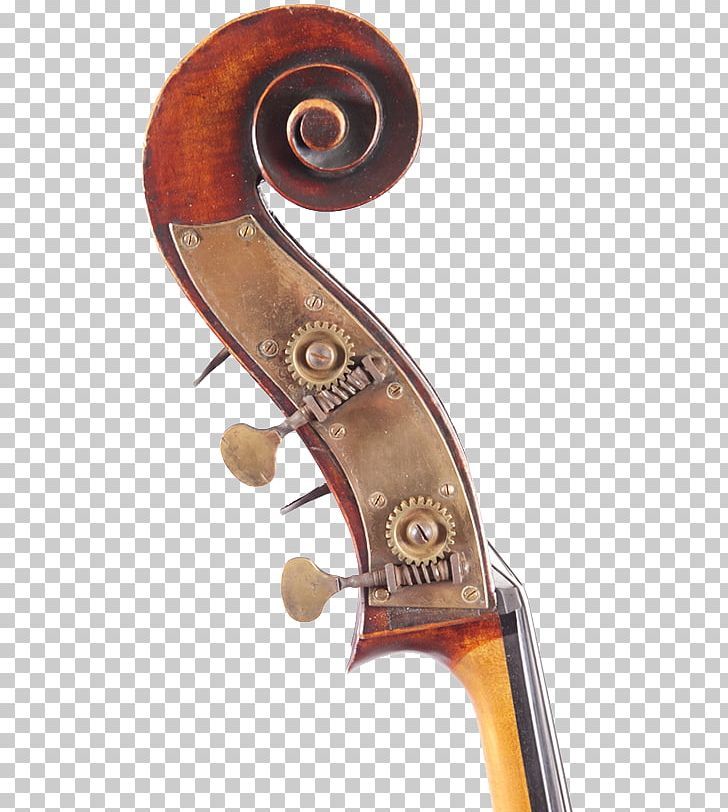Violone Double Bass Cello Viola Violin Png Clipart Bass