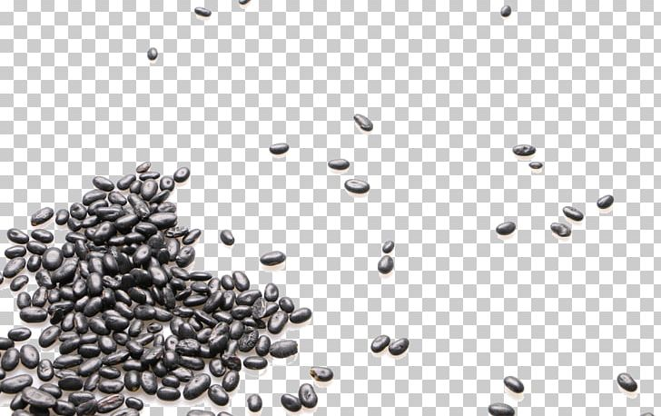 Black Turtle Bean Food Icon PNG, Clipart, Background Black, Bean, Beans, Black, Black And White Free PNG Download