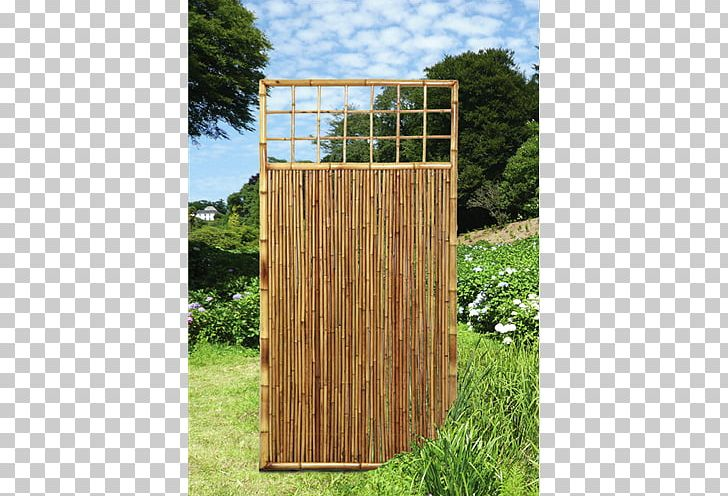 Fence Tropical Woody Bamboos Gate Shed Raised-bed Gardening
