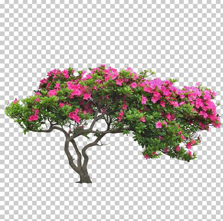 Shrub Garden Euclidean PNG, Clipart, Azalea, Branch, Bush, Cluster, Computer Software Free PNG Download