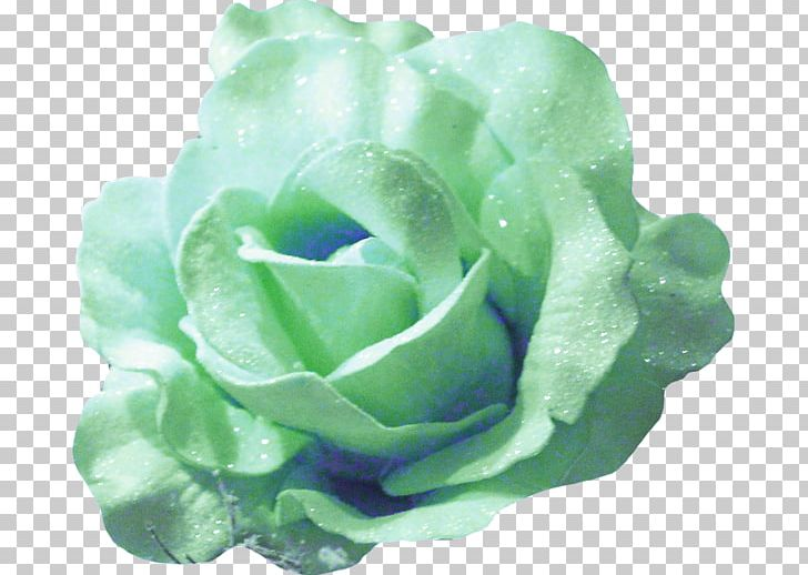 Garden Roses Portable Network Graphics PNG, Clipart, Art, Clip Art, Color, Cut Flowers, Deco Free PNG Download